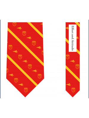 Vineyard Vines BasketBall Tie